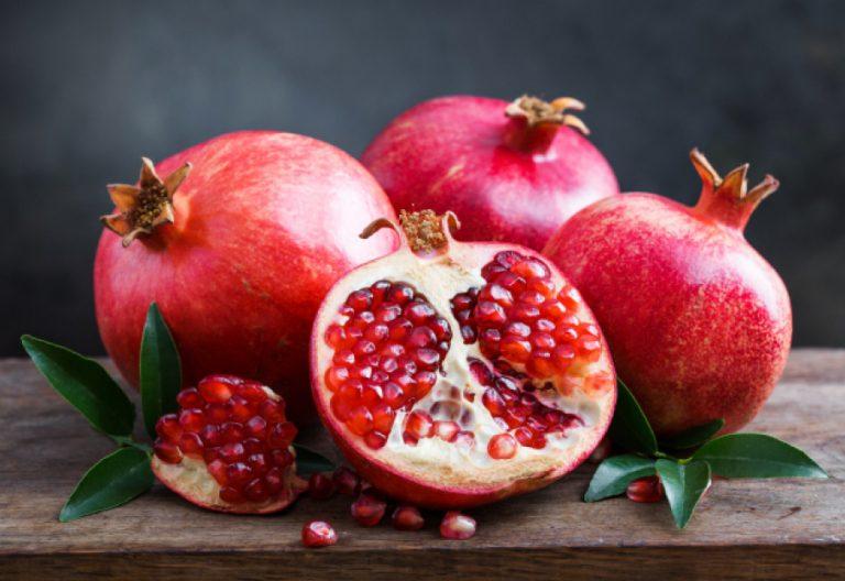 IBIOTICS-Inhaltsstoff-Granatapfel-Extrakt