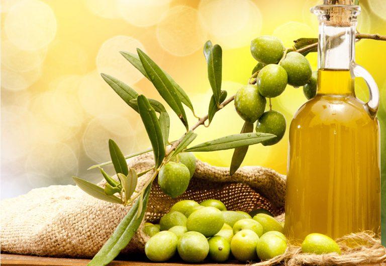 IBIOTICS-Inhaltsstoff-Olivenoel