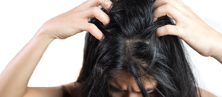Kopfhaut-und-Behaarte-Körperstellen-IBIOTICS-2