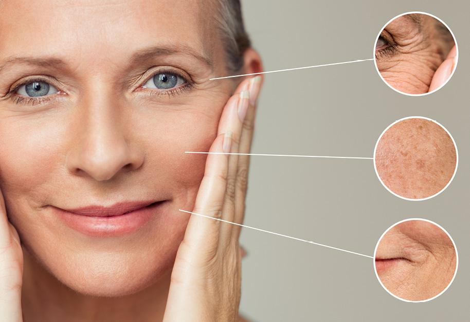 Ratgeber-Haut-in-den-Wechseljahren-IBIOTICS