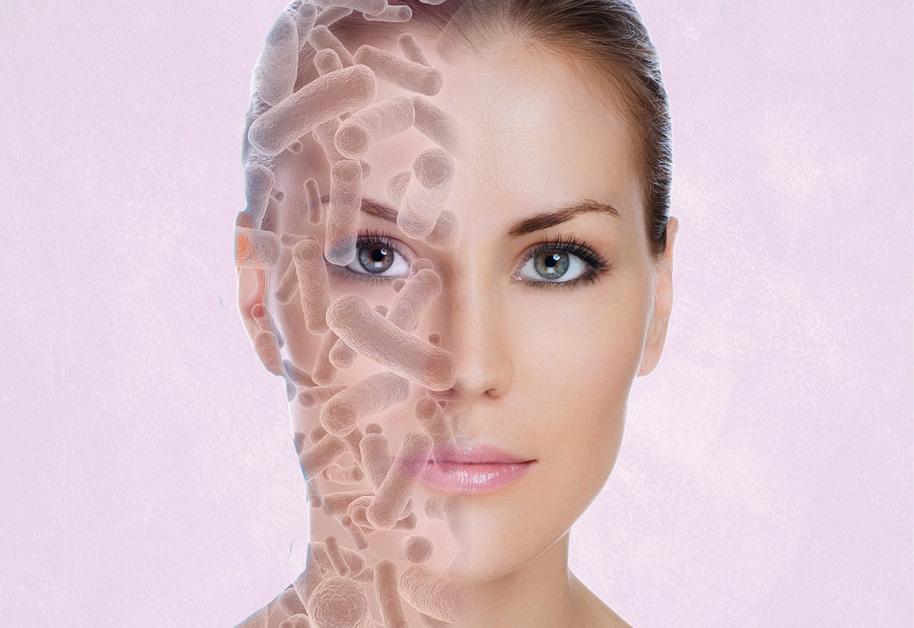 Ratgeber-Mikrobiom-der-Haut-IBIOTICS